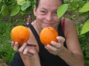 Rue Picking the first Homegrown Honeybells